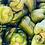 Thumbnail: Poivrons verts