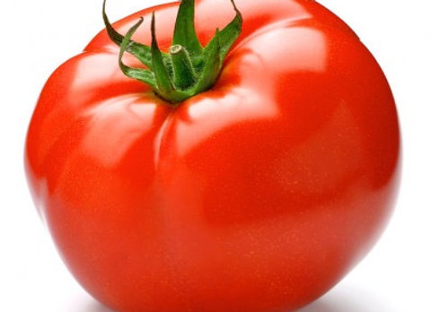 Tomate ronde / CAB