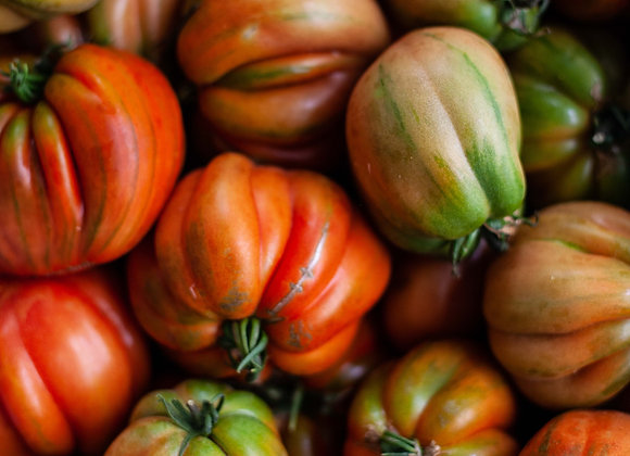 Tomates anciennes mix (jaunes roses noir ...)