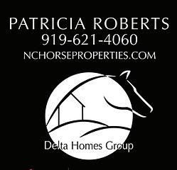 delta_homes_logo.jpg