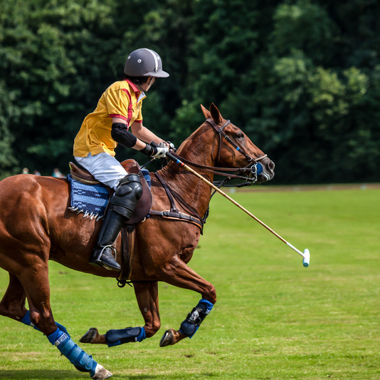 A Polo Player hits the Polo ball with a