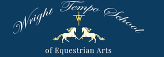 Wright Tempo Logo.png