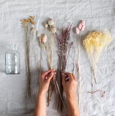 Atelier Fleurs séchées