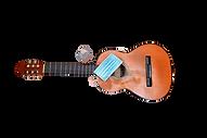 ffmusique_relance_guitare_gel_covid