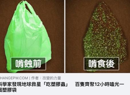 【環境保護】塑膠垃圾出現天敵了?!