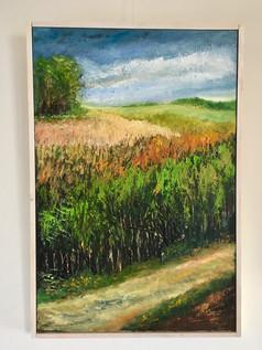 Landelijk grasland