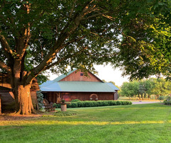 inisfree barn twilight.jpeg