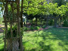 inisfree grassy site.jpeg