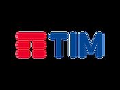 TIM-logo-logotype-1024x768.png