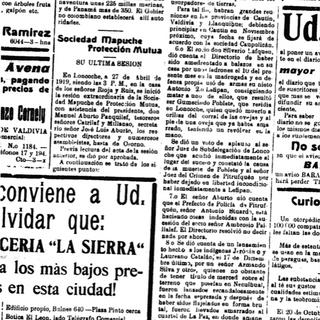 El Diario Austral, 5 de enero de 1919