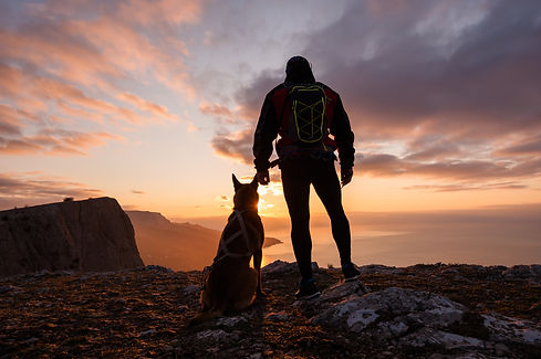 Silhouette of young man with his dog at dawn with sea and mountain on background..jpg