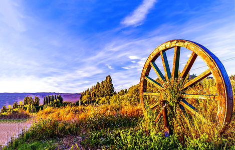 Wagon wheel in sunset field. Big wagon w