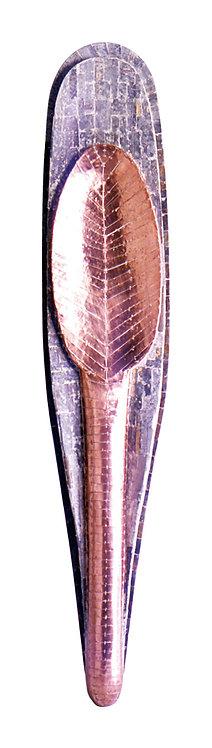 Escudo com Colher -1999