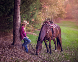 Equine Photography Mocksville NC