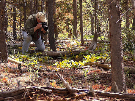 Real Life Treasure Hunting with Dal Neitzel (and Forrest Fenn's treasure!)