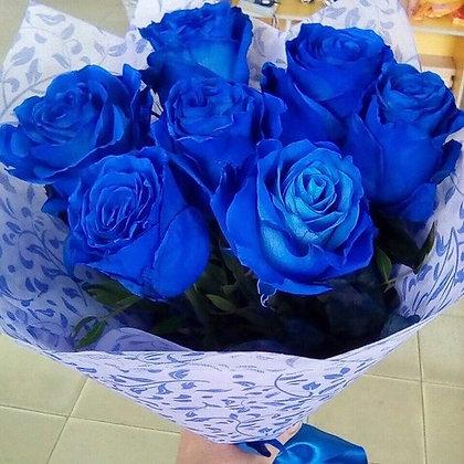 Ecuadorian Blue Rose Seven