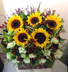 Sunshine Blooms 2