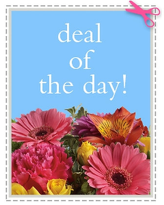 Deal of the Day (Select)