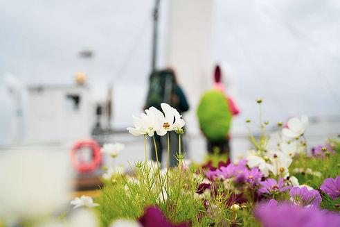 blomster_skibladner-1600px_GK.jpg