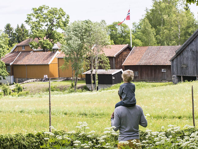 Stenberg---Sommer-2017---Foto-Jan-Tore-Ø