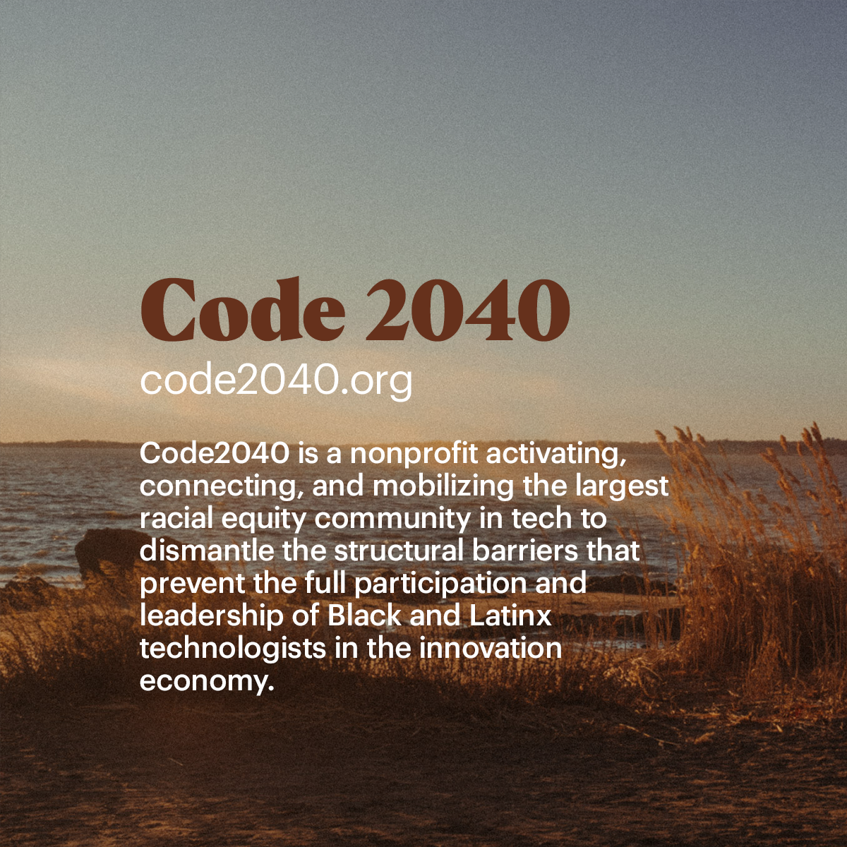 Code 2040 Code2040 is a nonprofit activating,  connecting, and mobilizing the largest  racial equity community in tech to  dismantle the structural barriers that  prevent the full participation and  leadership of Black and Latinx  technologists in the innovation  economy.