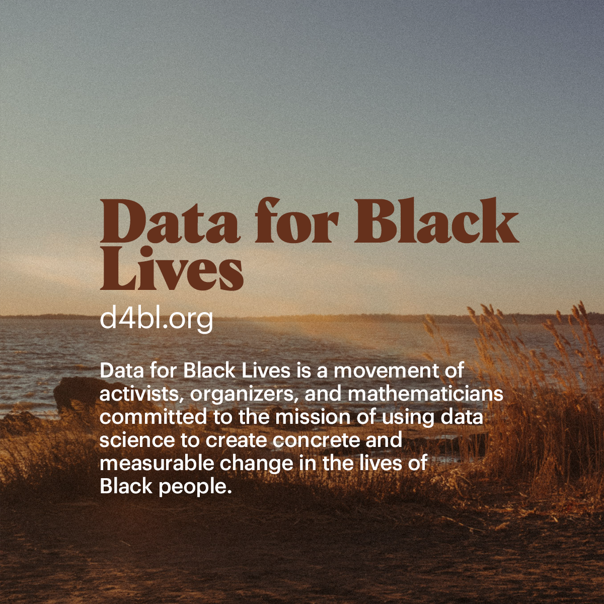 Data for Black Lives Data for Black Lives is a movement of  activists, organizers, and mathematicians  committed to the mission of using data  science to create concrete and  measurable change in the lives of  Black people.