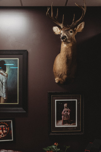 Deer head mounted on a dark wall