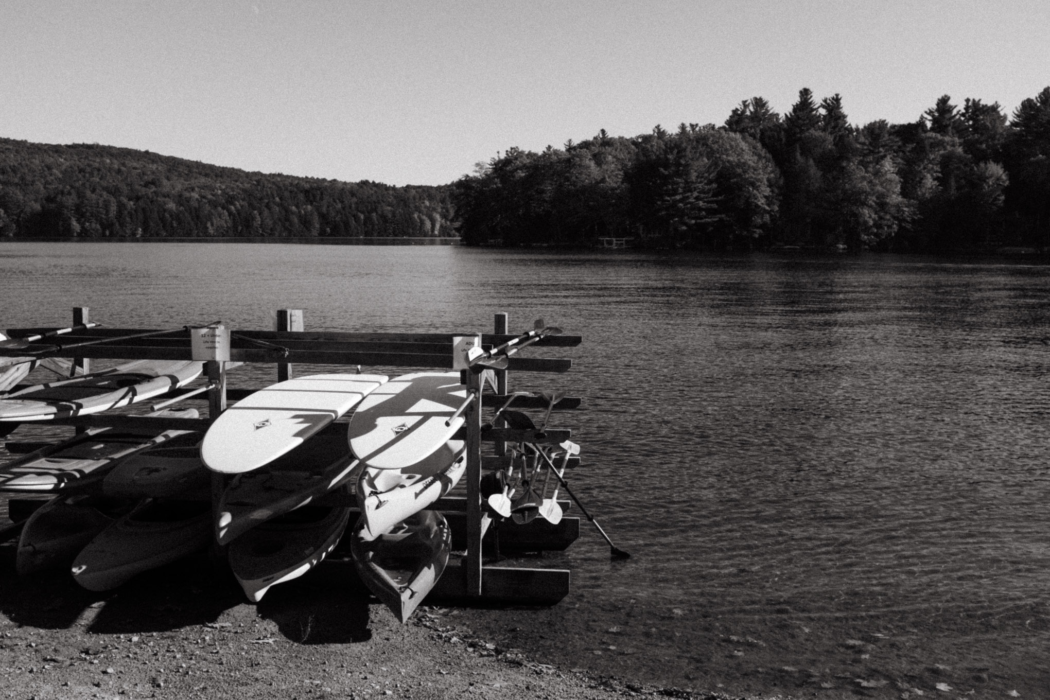 Black and white photo of a lake boarded by trees. Paddle boards sit on a rack in the foreground.