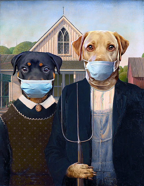 Dogs with Masks.jpg