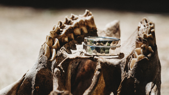Wedding rings rest on top of an animal skull.