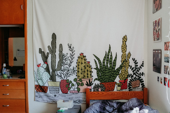Tapestry wall hanging of cactuses and succulents.