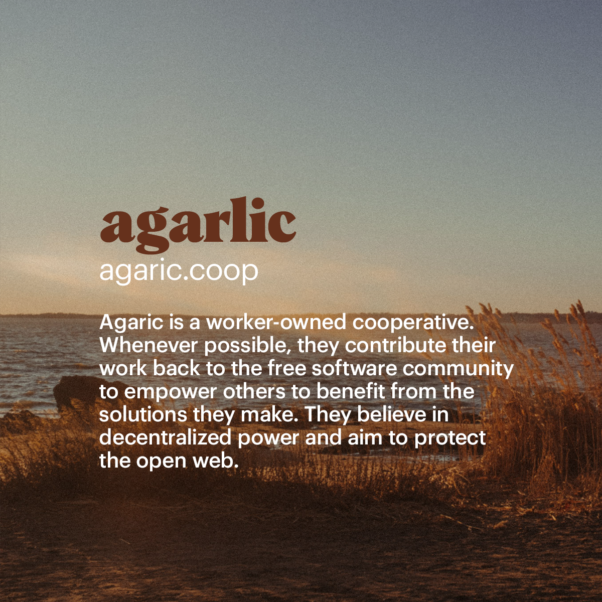 agarlic Agaric is a worker-owned cooperative. Whenever possible, they contribute their  work back to the free software community  to empower others to benefit from the  solutions they make. They believe in  decentralized power and aim to protect  the open web. I first learned of  garlic after hearing  Michele 'Micky' Metts speak as a keynote in 2019 talking about data, the internet, And the dangers of governing forces. (Available on Youtube)