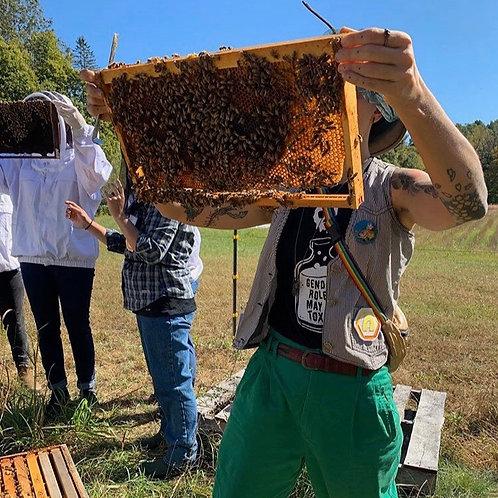 Intermediate Natural Beekeeping Course