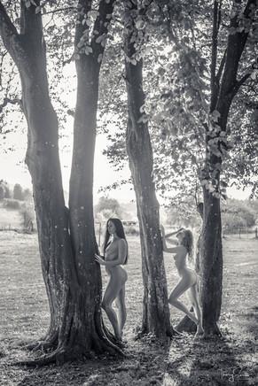 Elle-Gemma-8.jpg