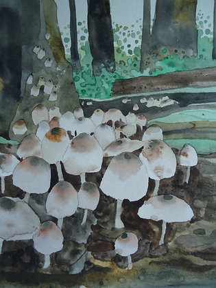 """Mushroom Flush Micah Caps 9x12"""""""