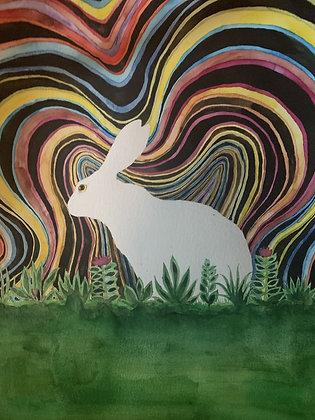 """White Rabbit 14x18"""""""