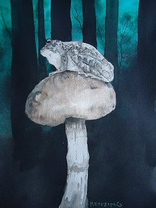Grey Tree Frog n Shroom