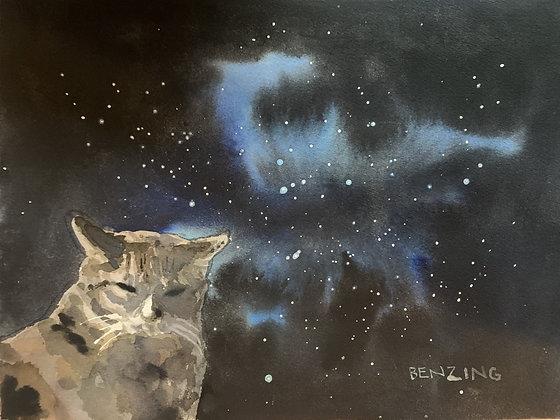 """Space Cat 9x12"""""""