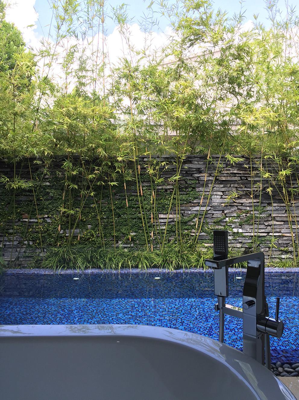 バスタブから見えるプール