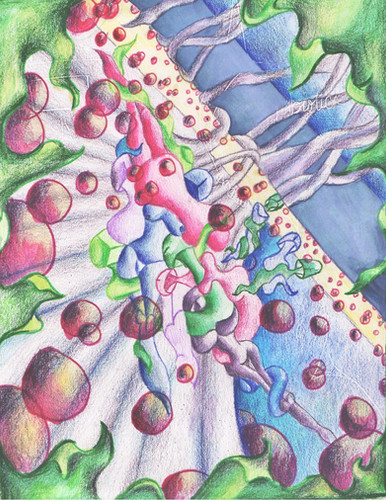 Stem Cells Birth