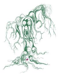 WA tree study