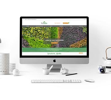 Creacion de sito web