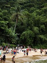 Brasil beach