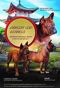DragonGodKennels