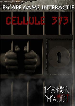 Affiche Cellule 373.JPG