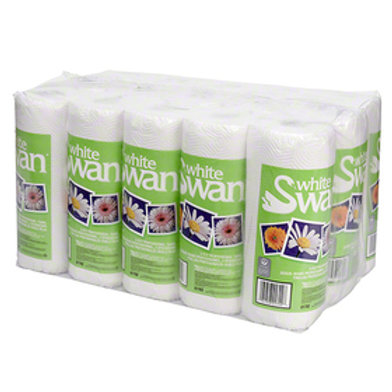 2-Ply Paper Towels - Case of 15