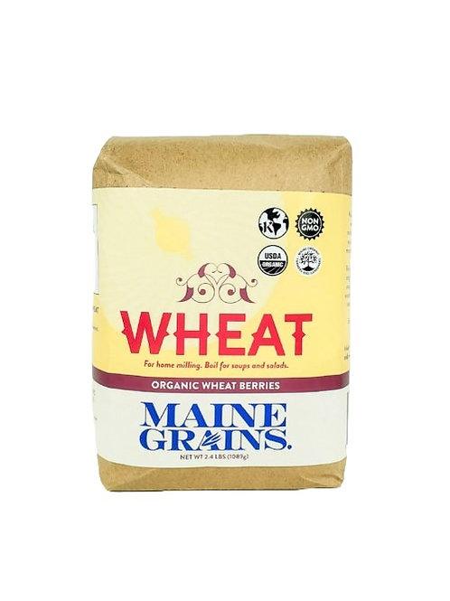 Maine Grains- Spelt Flour & Berries 2.4lb Organic