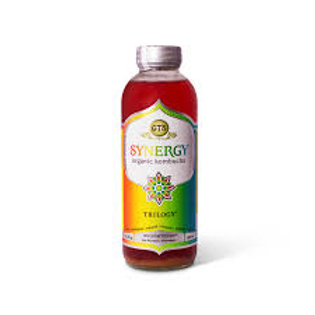 GT's SYNERGY Trilogy Kombucha 16oz