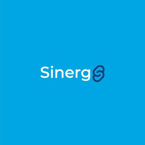 Synergi-02.jpg