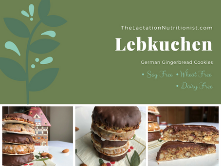Lebkuchen (German Gingerbread Cookies)